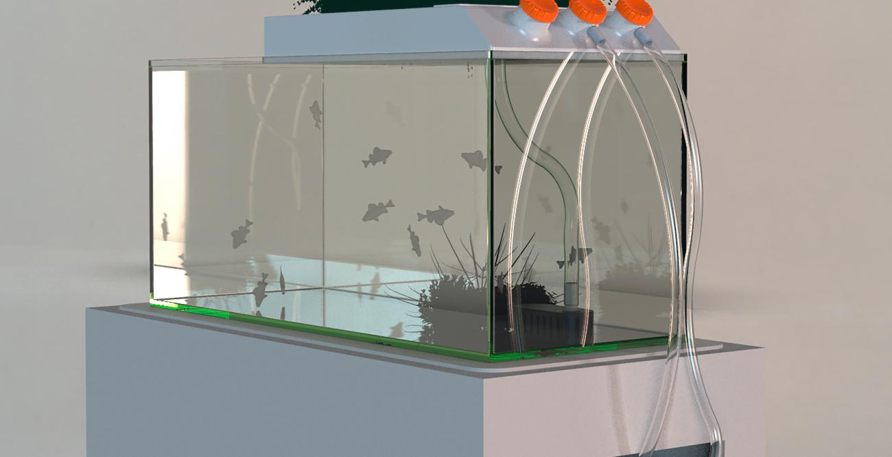 Aquarium filtration system design